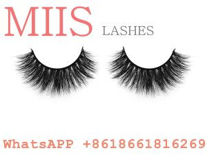 3d mink Lashes makeup